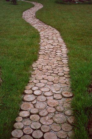 Tree stump path.