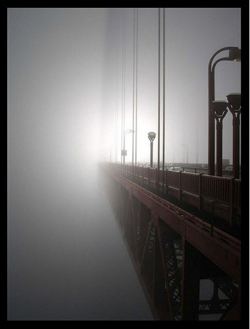fog with bridge photography photo