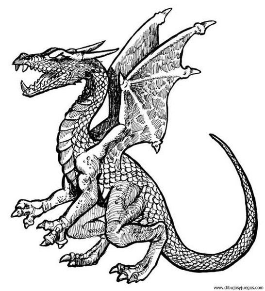 Dibujos Para Colorear Dificiles De Dragones Dragon Drawing Dragon Sketch Dragon