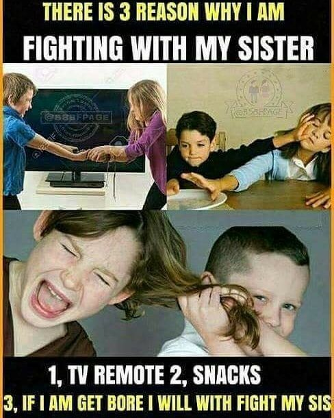 Anamiya Khan Sister Quotes Funny Siblings Funny Quotes Brother Sister Quotes Funny