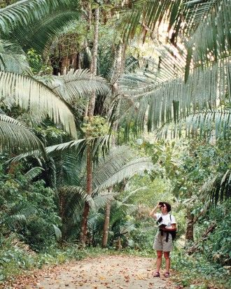 """See the """"Explore the Jungles of Southern Belize"""" in our 5 Adventurous Honeymoon Destinations for 2015 gallery"""