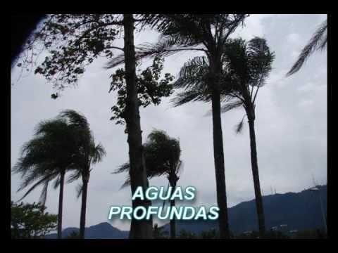 AGUAS PROFUNDAS ( REFLEXÃO DE VIDA )