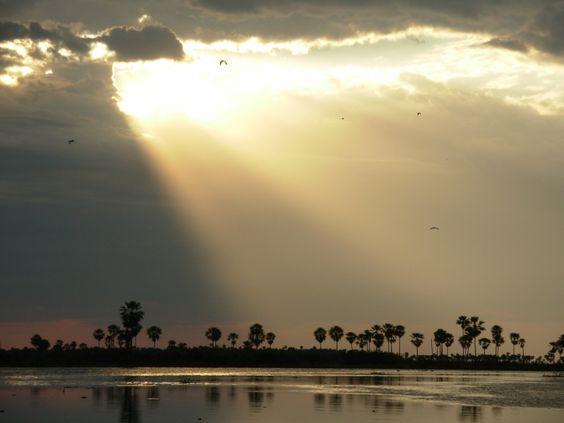 Pantanal Paraguayo. Chaco Norte. Fuente: Taringa
