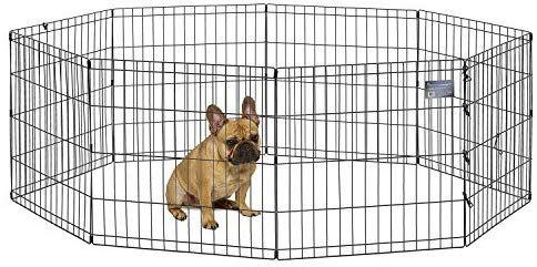 Amazon Com Midwest Foldable Metal Exercise Pen Pet Playpen 24 W X 24 H Pet Playpens Pet Supplies Dog Playpen Pet Playpens Dog Pens