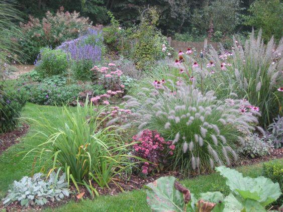 Echinacea, Gräser, Sedum, Madiona