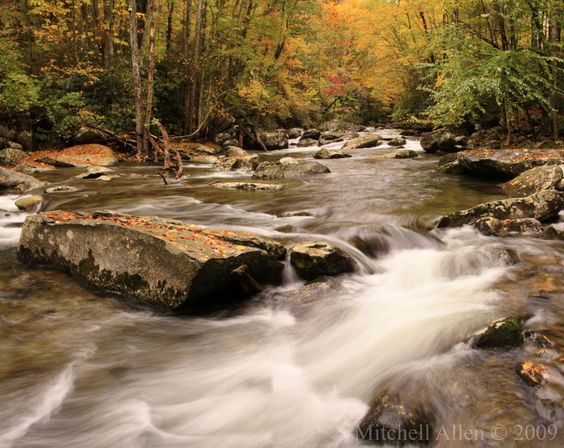 Little River in fall colors, Great Smoky Mountain National Park