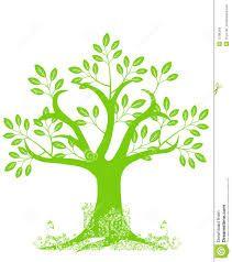boom tekening kleur - Google zoeken