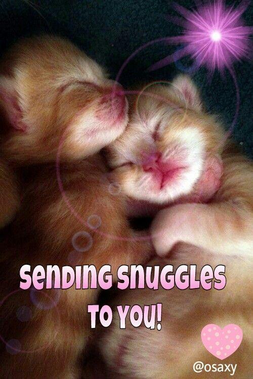 Snuggles: