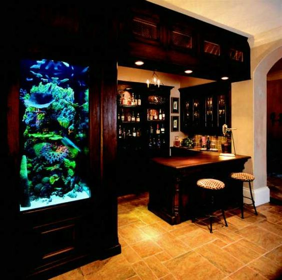 Aquarium fish tanks and bar on pinterest for Fish tank bar