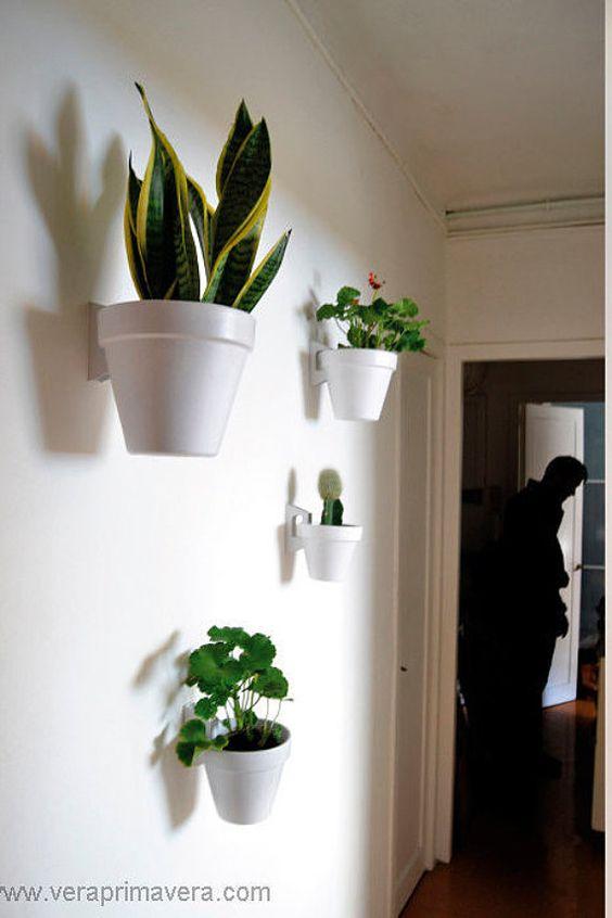 Soporte single en blanco maceta azul gris ceo por for Plantas salon decoracion