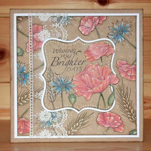 CS146D 'In the Cornfield' Clear set contains 13 stamps designed by the very talented Sharon Bennett. Card by Sally Dodger: