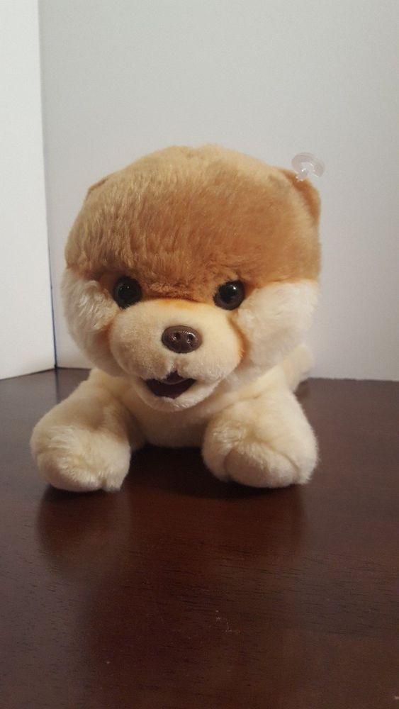 Must see Bear Brown Adorable Dog - d3ce2554a9749260b963730151f50f3b  Photograph_718589  .jpg