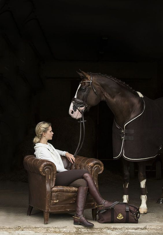 www.horsealot.com, the equestrian social network for riders & horse lovers | Equestrian Fashion : brown look.
