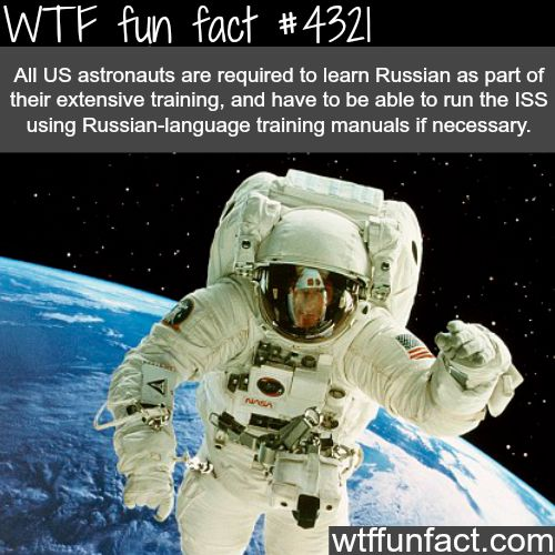interactive learning space and astronauts - photo #23