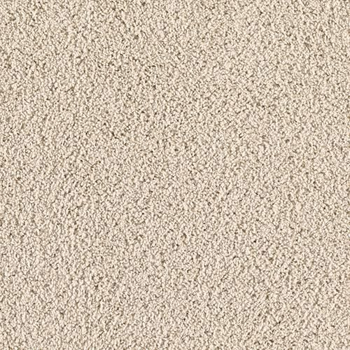 Pet Shield By Mohawk Shoreview Plush Carpet 12 Ft Wide Mohawk Industries Silk Carpet Buying Carpet