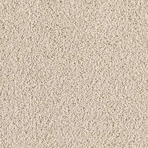 Pet Shield By Mohawk Shoreview Plush Carpet 12 Ft Wide Mohawk Industries Silk Carpet Buying Carpet