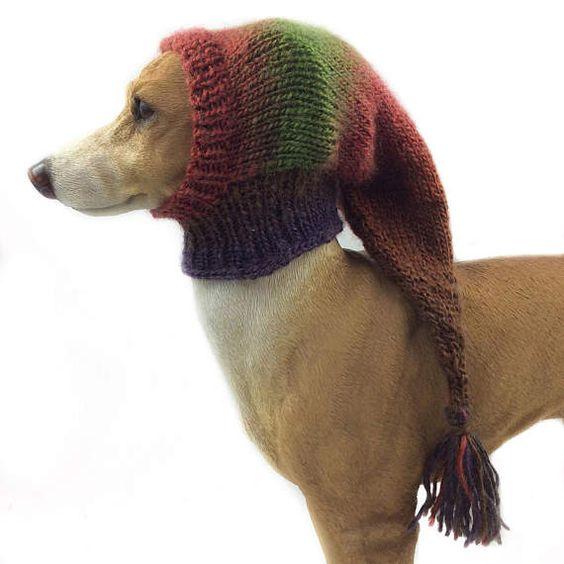 Kleine Blaue Whippet Snood Hund Hut Italienisches Windspiel
