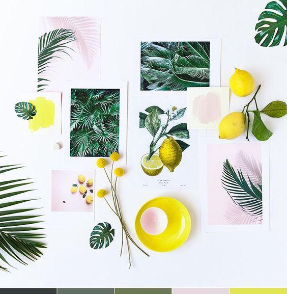 Concours Pastel & botanique: