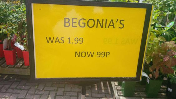 Confused or what? If Begonias is a plural the apostrophe is clearly not needed but it should also say 'were' and not 'was'. Wrong on so many counts on such a tiny sign.