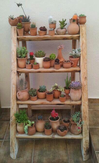cactus pots and cactus jardin on pinterest. Black Bedroom Furniture Sets. Home Design Ideas