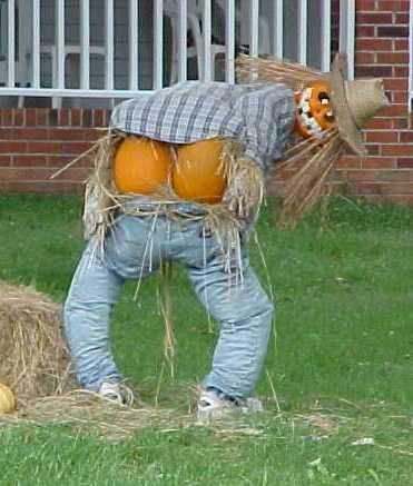 your pumpkins are showing: Halloween Decorations, Scarecrow Humor, Mooning Scarecrow, Halloween Lawn Decorations, Halloween Pumpkins, Fall Halloween, Front Yards, Funny Stuff, Halloween Ideas