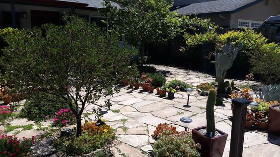 This landscaping is being irrigated with #recycledwater from the #AquaKlear #septicsystem! (844) 224-2782 #betterthanseptic #useyourwatertwice #ClarifyingTrio