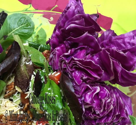 CABBAGE ROSES @ Mint Juleps, Magnolias & Pearls Blog: