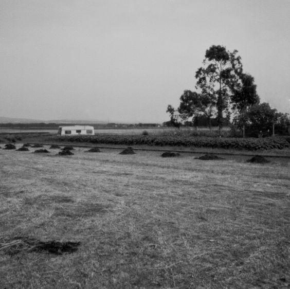 o mundo cabe no buraco da agulha: Ria de Aveiro