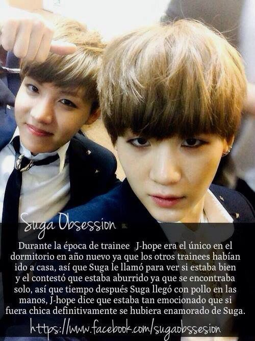 BTS DATOS SUGA Y J HOPE XD