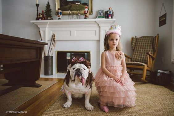 Rebecca Leimbach Harp Lola bulldog princess: