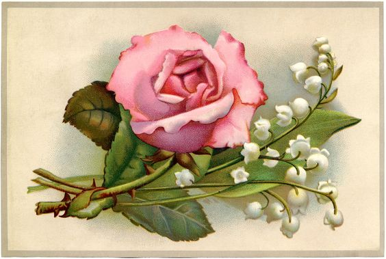lily clipart | Vintage Roses and Lily of the Valley Image: