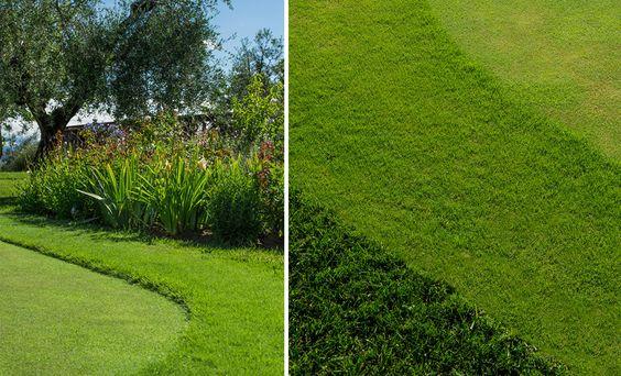 Progettazione e realizzazione campi da golf