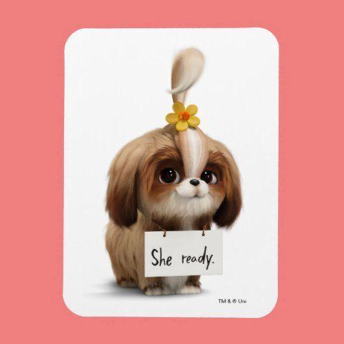 Secret Life Of Pets Daisy She Ready Magnet Zazzle Com In 2020 Secret Life Of Pets Secret Life Daisy Dog