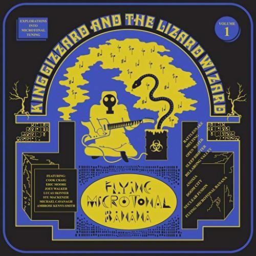 Best Price Flying Microtonal Banana Lp 12 Album 33