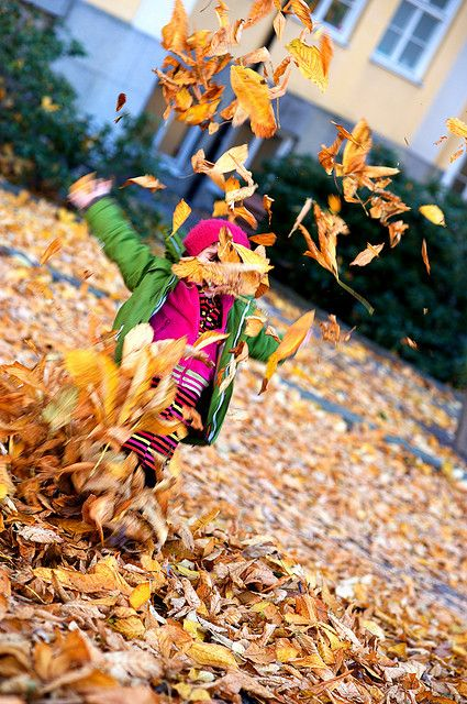 Plant a fall garden! Check out these great autumn gardening tips for kids.