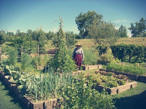 Agricultura Biológica: Guia Básico do Iniciante