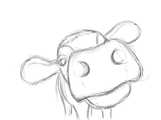 Gallery For gt How To Draw A Cow Face Step By
