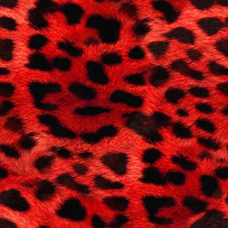 leopard and red wallpaper - photo #3