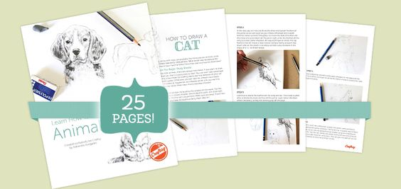 Aprende a dibujar animales