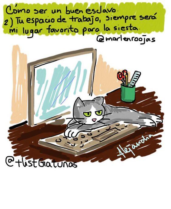 #EscuelaParaHumanos 2) Descanso.