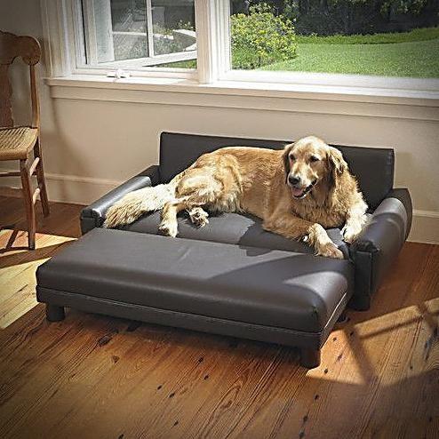 Ultimate Dog Bed Dog Moga Dog Sofa Bed Dog Sofa Leather Dog Sofa