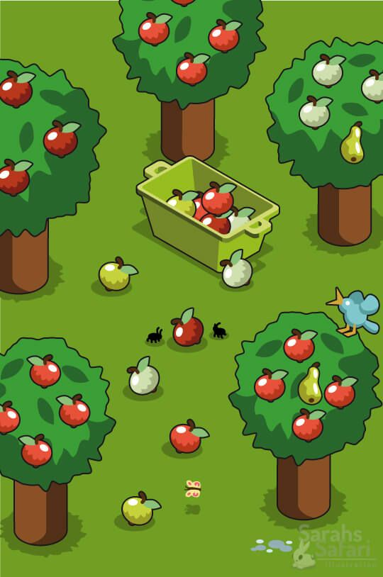 Apple tree garden with a box of ripe and tasty apples. #isometric #vector #graphic by Sarahs Safari Illustration