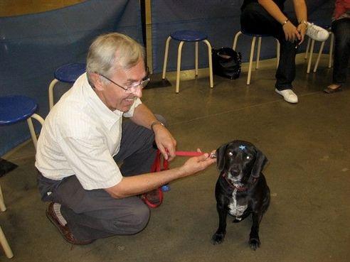 Dog Training Collar Reviews Dog Training Yoga Dog Training