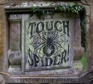 """TOUCH THE SPIDER! release their first double CD """"I spit on your grave"""" with 28 songs.    TOUCH THE SPIDER! mix elements of the 70th with Gothic, Doom and Psychedelic.    They are inspired by Joy Division, early Pink Floyd, Hawkwind, Motörhead, Black Sabbath, Pentagram and Saint Vitus. An emotionally thick and entirely developed atmosphere evolves from the melancholic and at the same time catchy sound. Feels like Black Sabbath jamming with Joy Division."""