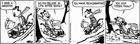 Image result for calvin and hobbes death