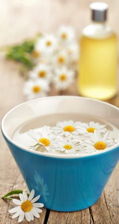 So hilft Kamille gegen Pickel, Akne, Mitesser und unreine Haut