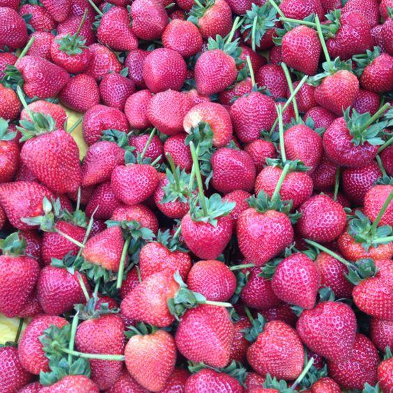 Jumbo Strawberry's