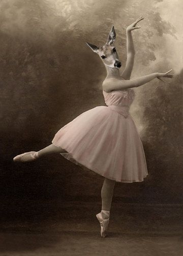 Grace Jahrgang Hirsch-Print Ballerina Hirsche von AnimalFancy