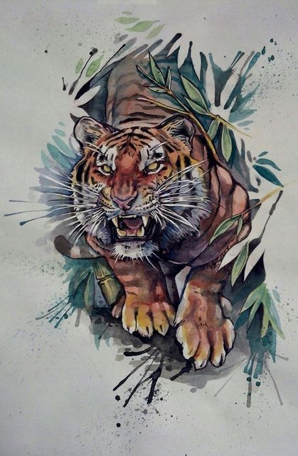 Tigers drawings colored google search