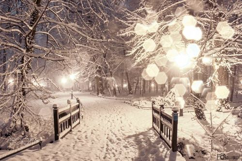 Beautiful Christmas And Croatia Image Zagreb Croatia Zagreb Croatia Images